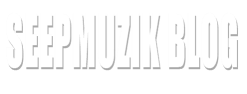 Seepmuzik Blog
