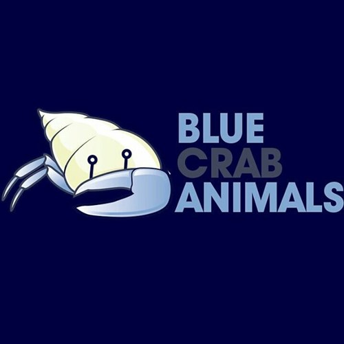 Blue Crab Animals